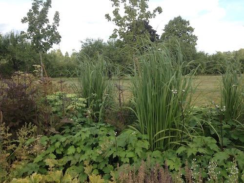Gröna nyanser i trädgård