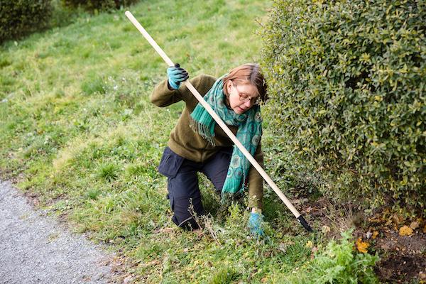 Katarina gräver